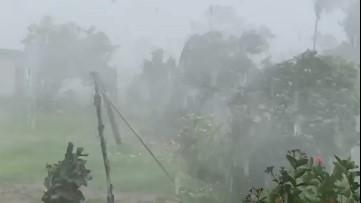 Cyclone's powerful wind and rain batter Fiji