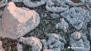 Stunning pancake ice formations look like works of art dotting Lake Michigan