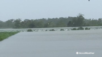 Levee overtopped by flooding from Hurricane Barry
