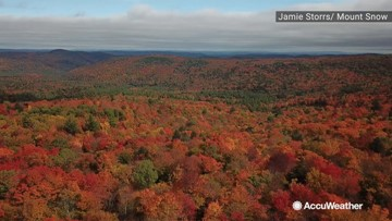 These stunning images of fall foliage are the reason people fall in love with this season