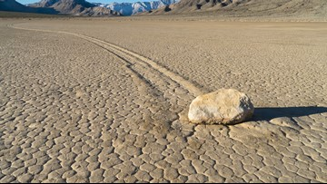 Scientists Spot 'Sailing Stone' Track in 200 Million-Year-Old Fossil