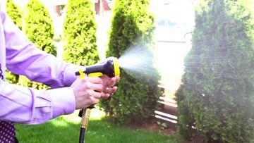 DEALBOSS: The best deal for your garden!