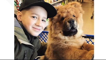 10-year-old woodworker raises thousands of dollars for animals in need