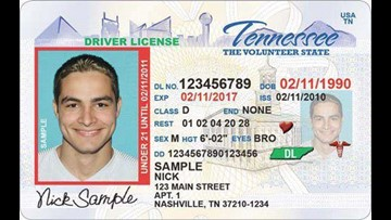 tn drivers permit test cost