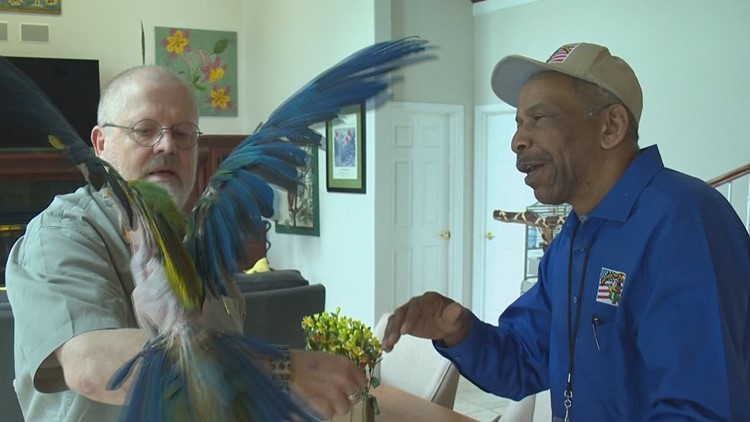Parrots for Patriots: Washington veteran adopts out birds to help other veterans