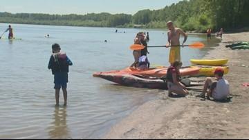 Toxic algae advisory issued for Vancouver Lake