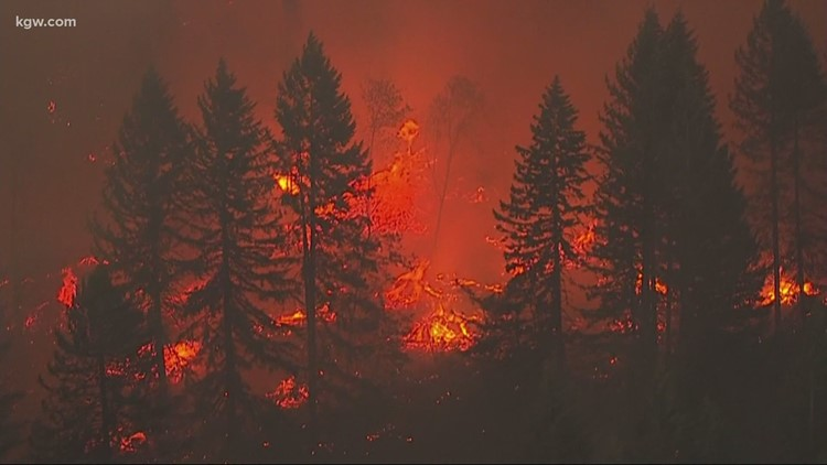 Wildfires produced up to half of pollution in US West, study says