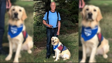 Battle Ground nonprofit hits milestone as it pairs 100th veteran with service dog