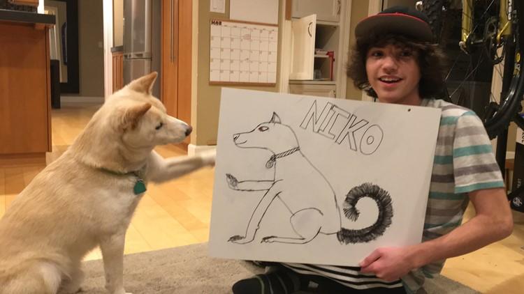 Niko the dog
