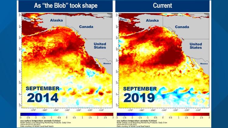 NOAA 'the blob' 2014 vs 2019