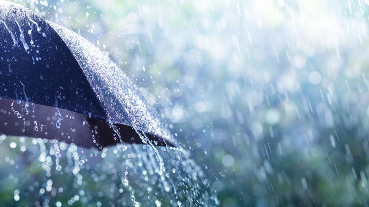 Western Washington's rainy weather 'certainly better than not having any rainfall at all'