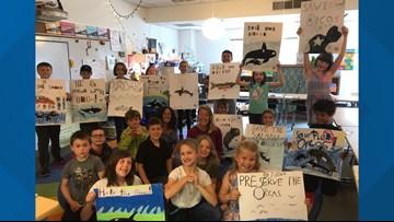 Vashon Island students work to save salmon, orcas