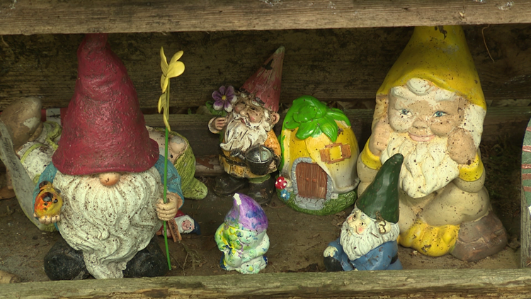 Go on a gnome scavenger hunt at this trail in Maple Valley