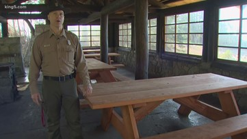 Old trees at Deception Pass State Park get new life as picnic tables