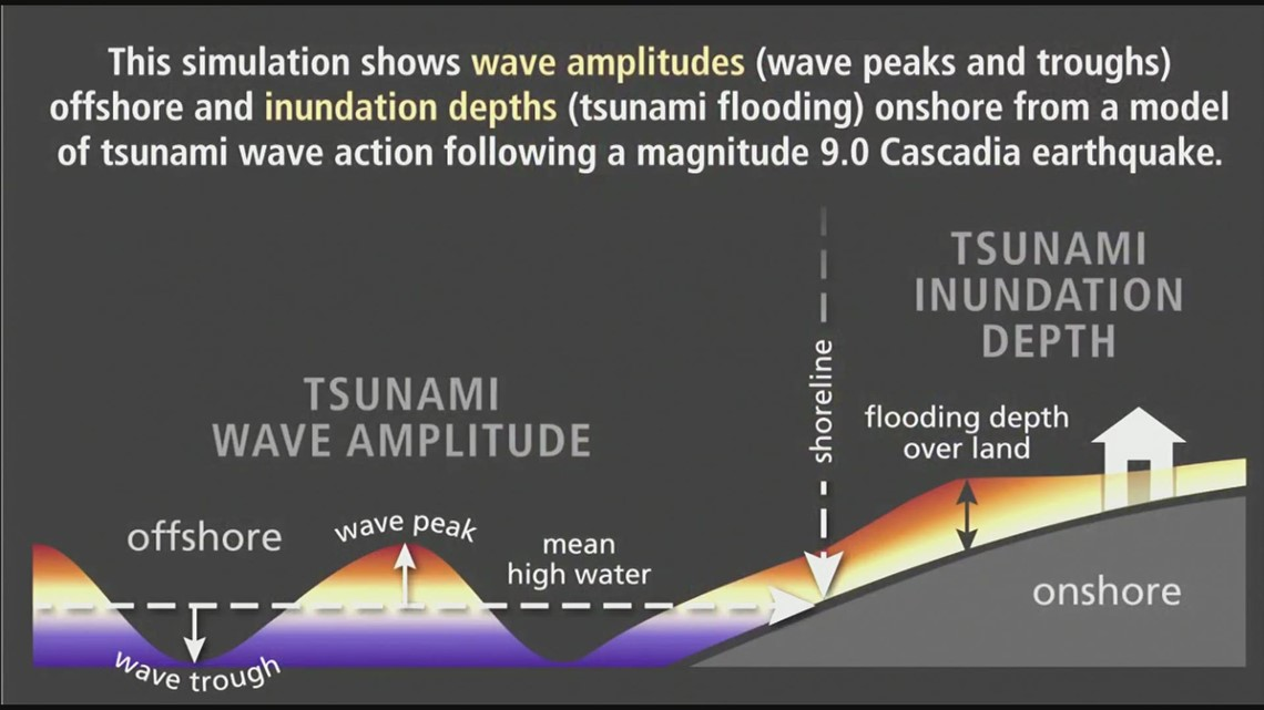 Raw: Tsunami simulations for Grays Harbor, Willapa Bay