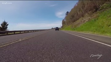 This Washington Coast drive is full of surprises - KING 5 Evening