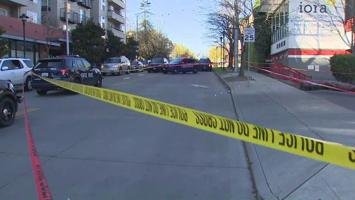 Police: Four people hurt in shooting near Judkins Park in ...