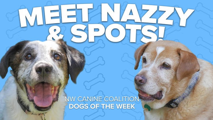 Canine Rescue of the Week: Nazzy and Spots