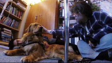 Classroom therapy dog helping Lake Stevens students de-stress