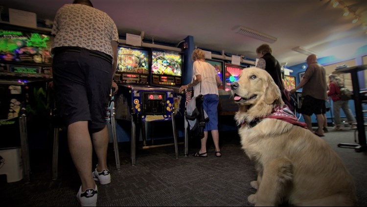 Seattle Pinball Museum is back in business