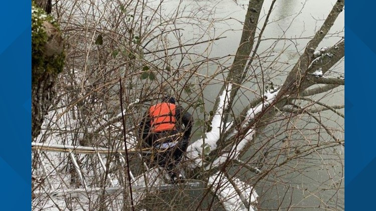 Dog rescue Whatcom County