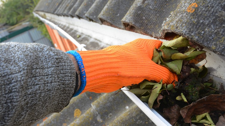 Clear gutters, drains ahead of fall rainstorm in western Washington this weekend