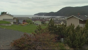 How a lost pet named Pokey surprised his Anacortes neighborhood
