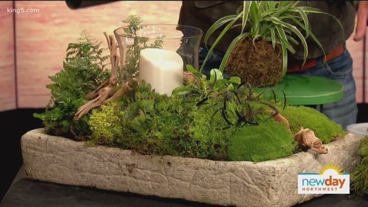 Artist takes advantage of Pacific Northwest\'s moss to beautify homes ...