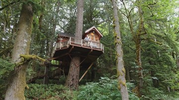 You can own the TV famous Ski-House Treehouse in the Fall City forest - Unreal Estate
