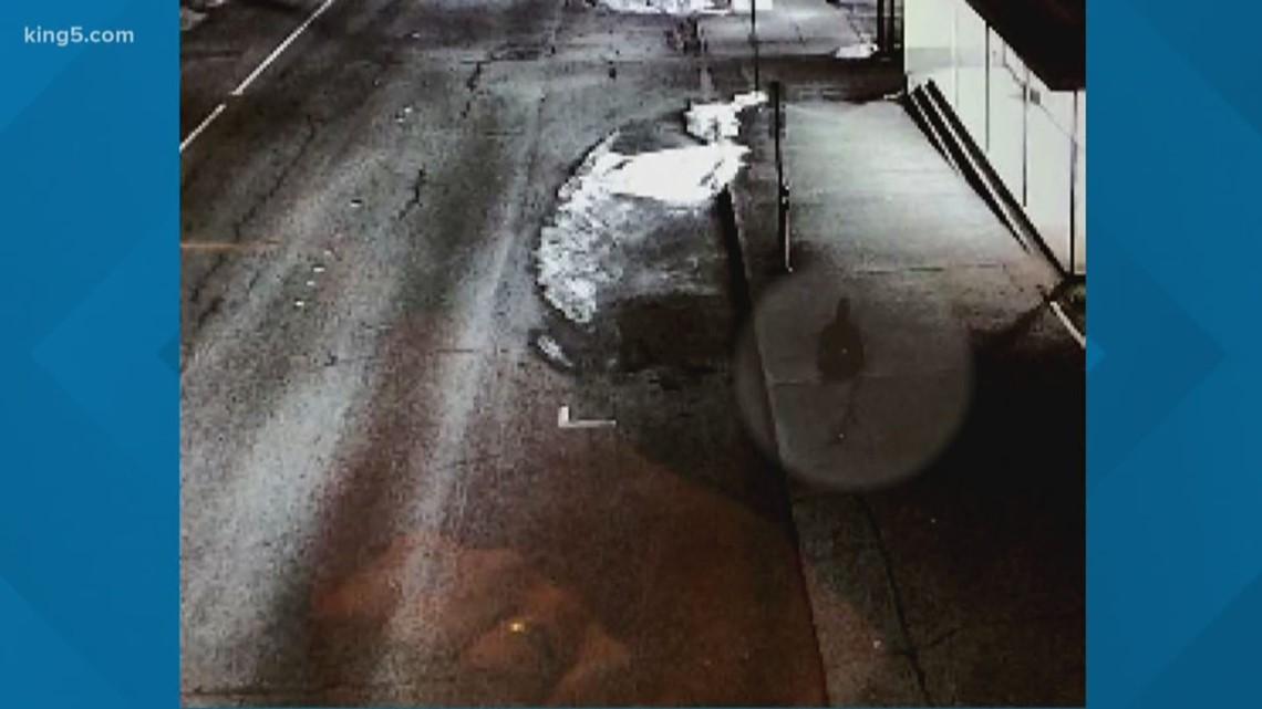 Surveillance camera captures person of interest in Bellingham arson case