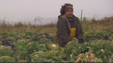 Movement creating opportunities for black farmers in the Northwest