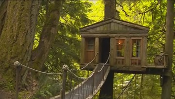 Best Quirky Place to Stay: TreeHouse Point