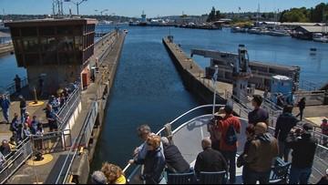 Take an Argosy Cruise through the Ballard Locks