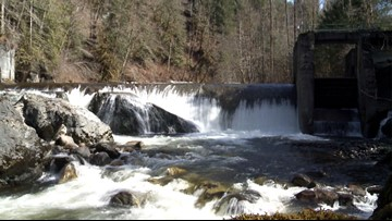 Dam projects on Washington rivers will restore miles of salmon habitat