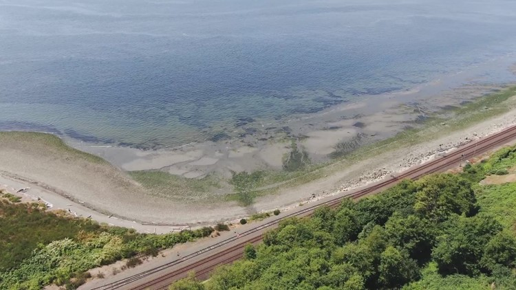 Drone footage: Richmond Beach in Shoreline on a sunny day