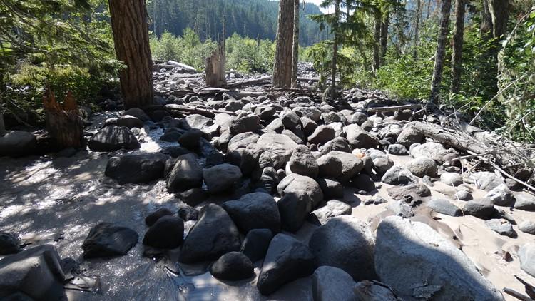 mount rainier debris flow