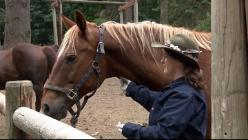Horse infection forces Girl Scouts to cancel riding camp in King County