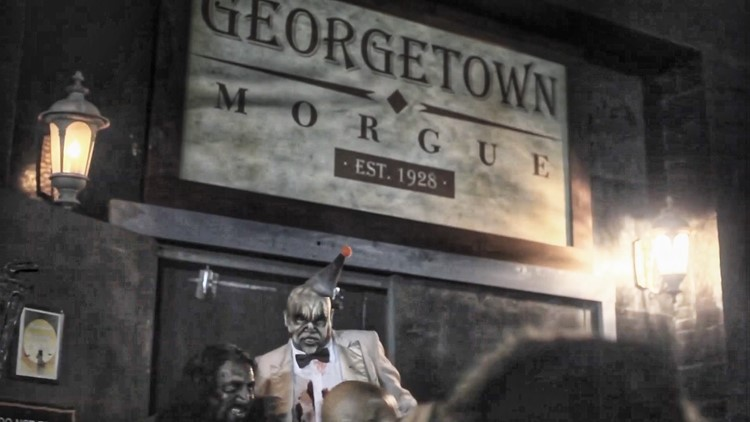 Find a frighteningly good time at the Georgetown Morgue - What's up this Week