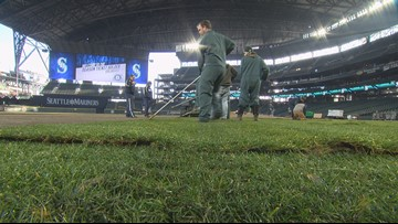 New team, new turf ... Mariners makeover digs deep