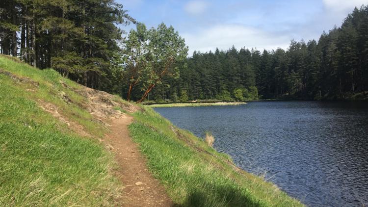 Hiking Anacortes Community Forest Lands