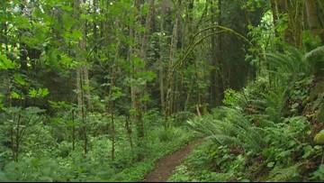 Enjoy Washington's state and national parks for free Sunday