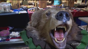 The Fremont Sunday Market is the best place to find a bargain - KING 5 Evening