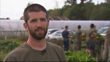 Finding peace after war at Growing Veteran's Farm in Bellingham - KING 5 Evening