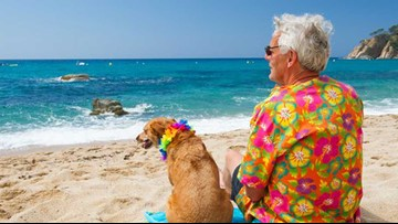 Be a millionaire in time for retirement with a Roth IRA