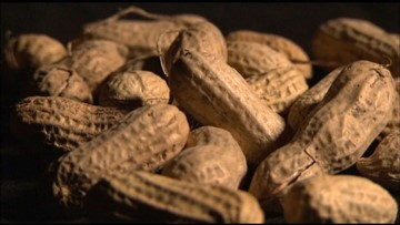 Seattle doctor weighs in on new peanut allergy treatment