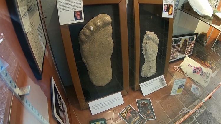 Bigfoot Sasquatch Plaster Casts of Feet