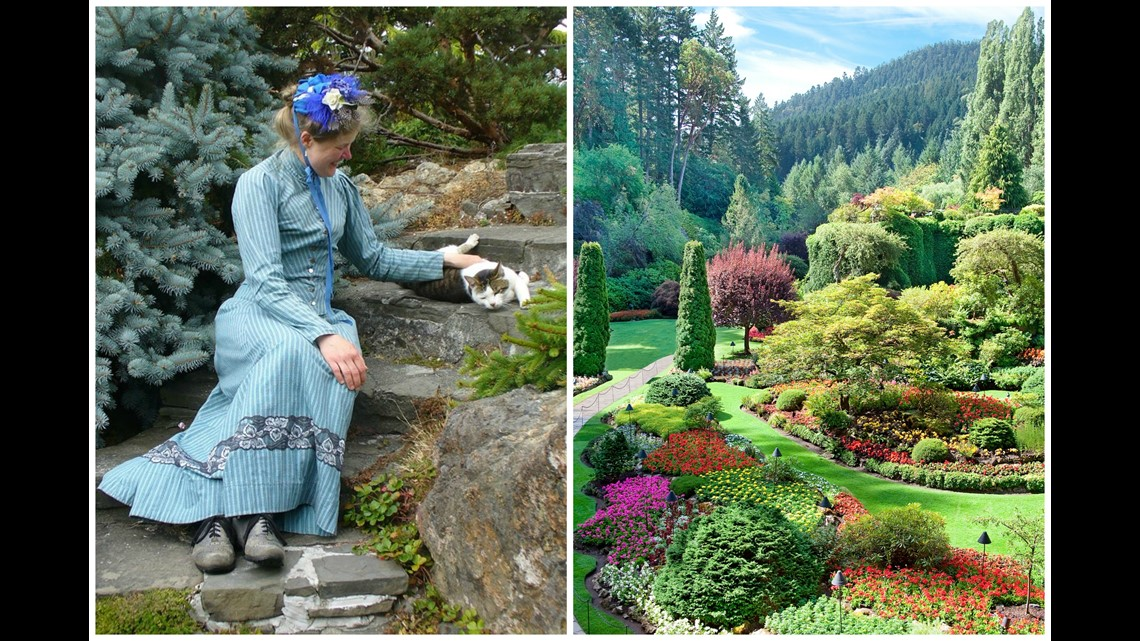 Victorian couple asked to leave butchart gardens over - Best time to visit butchart gardens ...