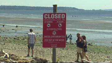 Beaches in King and Kitsap counties reopen after sewage spill