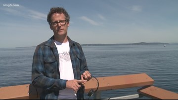 Underwater microphones record noise in Puget Sound