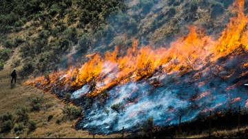 Plan to slow Western wildfires would clear strips of land